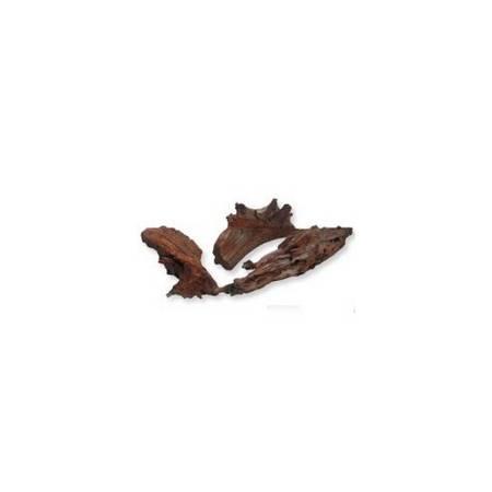 Zolux Korzeń z Mangrowca25-35 cm