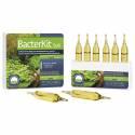 Prodibio BacterKit Soil 6 ampułek